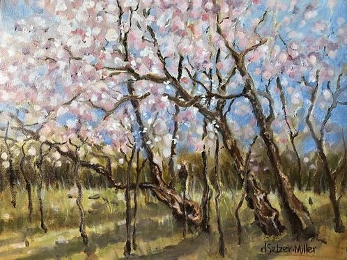 """Redbuds in Brown County"" by Darlene Selzer-Miller"