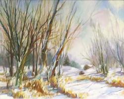 Cottonwoods in Winter by Carolyn Stachera