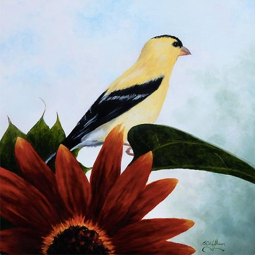 """Finch & Flower"" by Sam Hoffman"