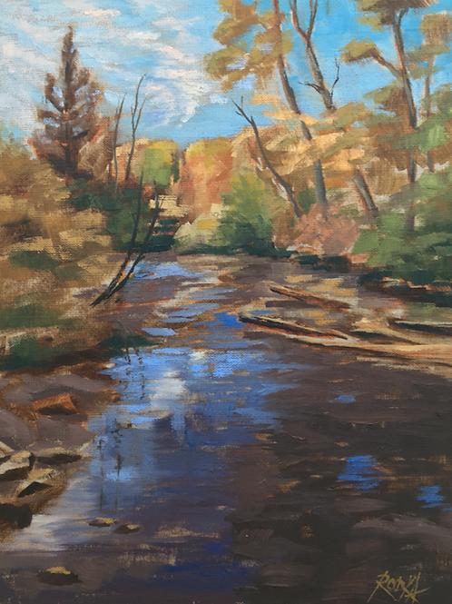 """River Reflections"" by Roddy Dammeryer"