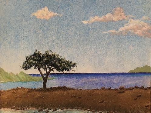 """""""Solitude"""" by Victoria Pope"""