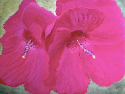 """""""Twin Hibiscus"""" by Suzie Emley"""
