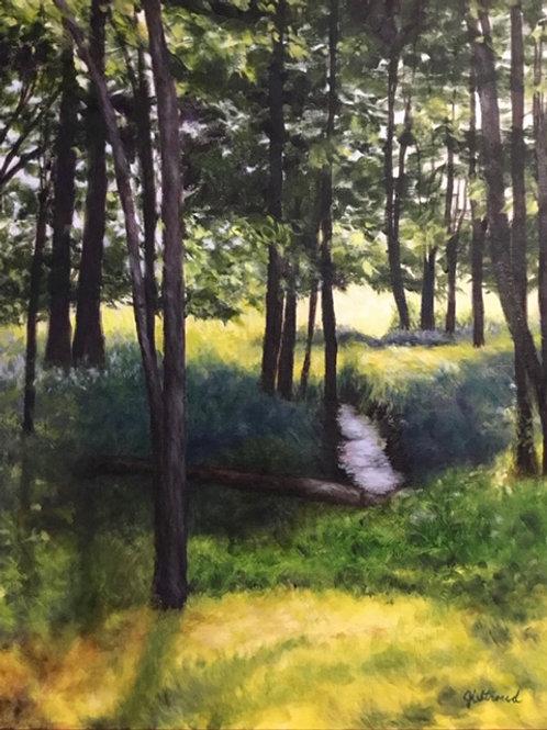 """Finding the Light"" by Jill Stroud"
