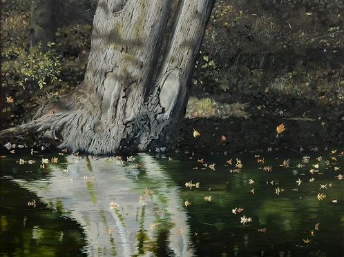 """""""Eel River"""" by Sam Hoffman"""