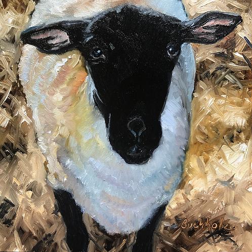 """Sheep"" by Terri Buchholz"