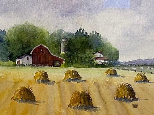 """Amish Farm"" by Karen Kubovchick"