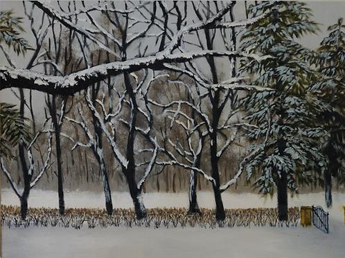 """""""Front Yard in Winter"""" by Robert Einhaus"""