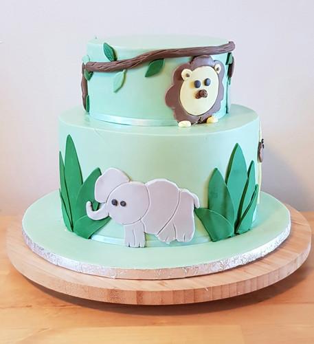 cake design jugle