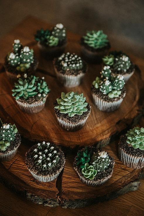 shoot-cactus-lovers-elielle-web-0273.jpg