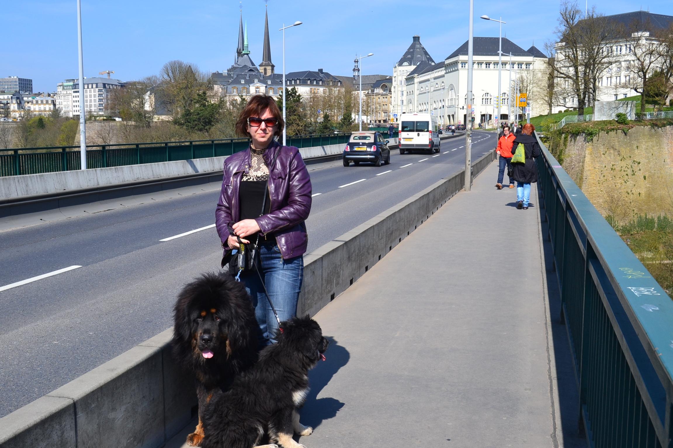 Люксембург март 2014.JPG