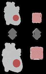 4 - Heart mimetics.png
