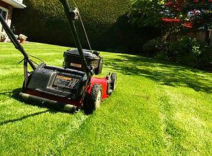 mowing-1024x762.jpg