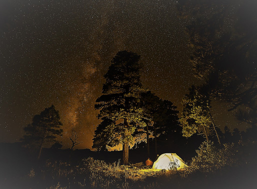 Campers Have a Nocturnal Visit from Lone Bigfoot in the Wayne National Forest