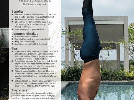 Everything you need to know about Headstand !