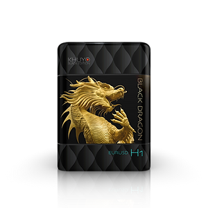 BLACK DRAGON EURUSD H1.png