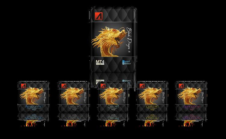 Black Dragon 5 Übersicht 5 Setups.png