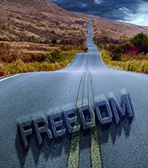 "5 Star IHIBRP Book Review: ""Freedom (The Mystery Of Landon Miller Book 3)"" by R.M. Gauthier"