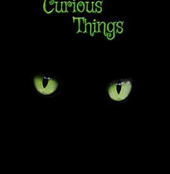 """5 Star IHIBRP Book Review: """"Curious Things: Stories of a black cat, superstition, and strange events"""