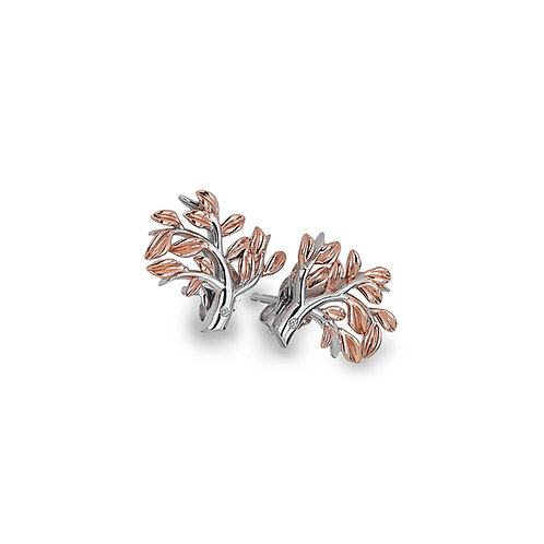 Passionate Earrings - Rose Gold Plated