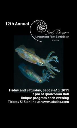 SDUFEX 2011 Poster.jpg