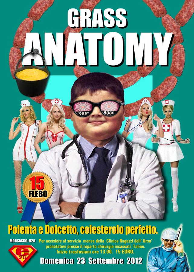 GrassAnatomy