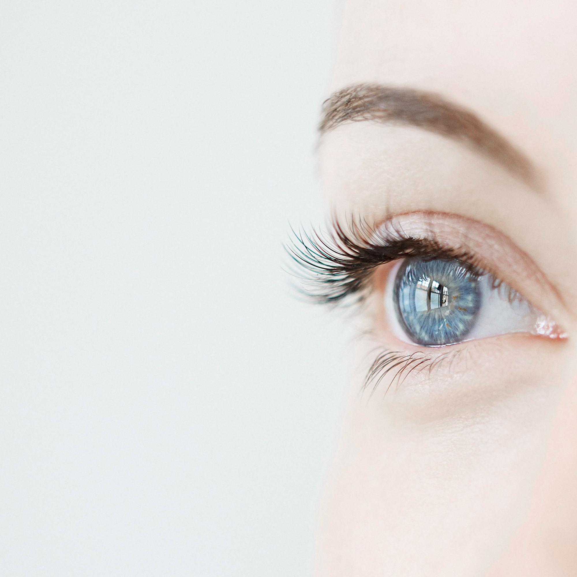 Augenbrauen-Transplantation