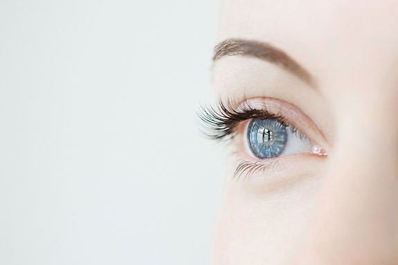 free lesson plan and resources about the sense of sight: How Does the Eye Work?
