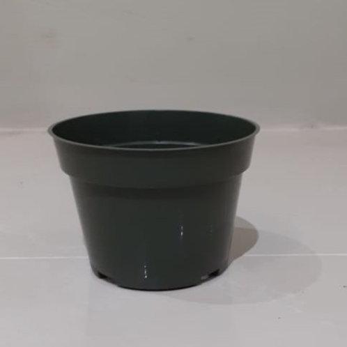 "4"" Dillen Plastic Nursery Pots"