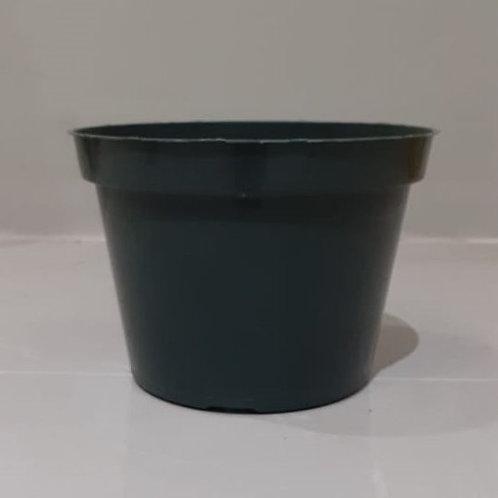 "6"" Dillen Plastic Nursery Pots"