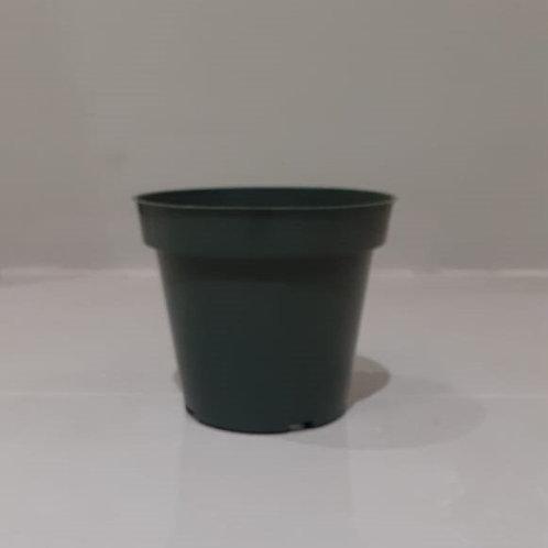 "4 1/2"" Dillen Plastic Nursery Pots"