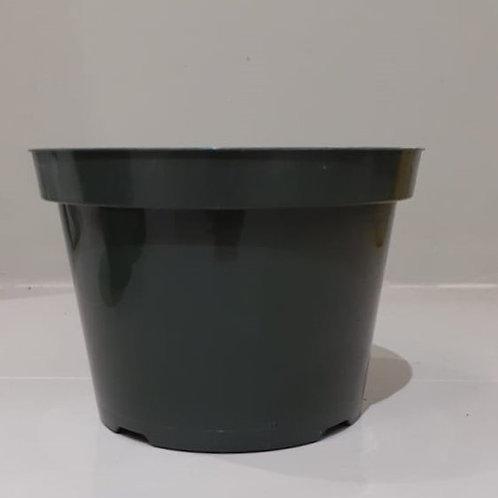 "8"" Dillen Plastic Nursery Pots"