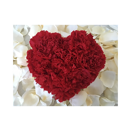 Red carnations heart