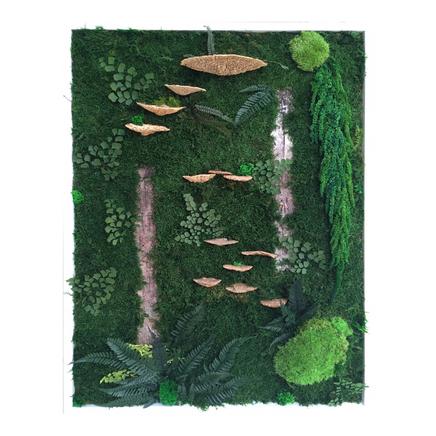 Woodland Sanctuary