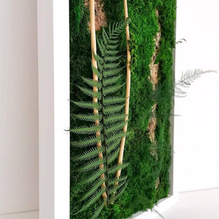 Moss art close-up