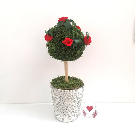 Preserved flowers topiary
