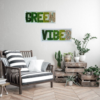 Green Vibes Moss Letters