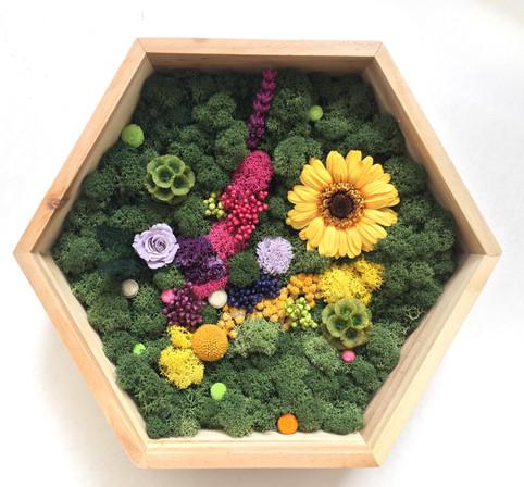 Floral Garden - gerbera