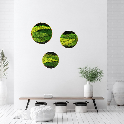 Moss circles