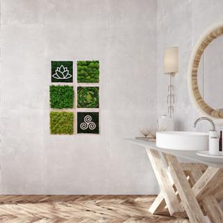 Moss wall art combo