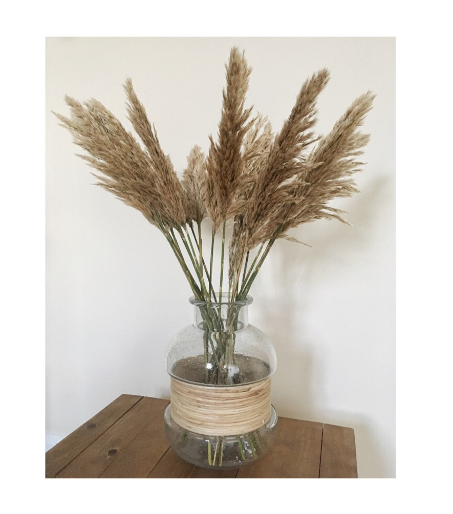 Pampas grass stalks in glass jar