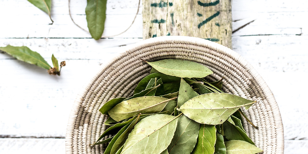 Monthly Herbal Medicine Salon: Herbs for Magic