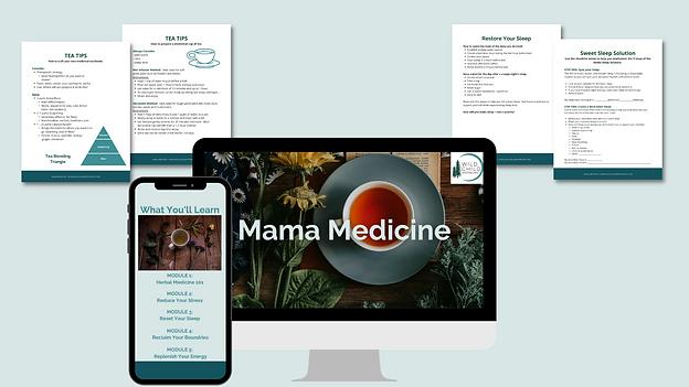 Mockup_MamaMedicine_BethSachnoff_2.png