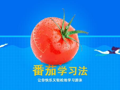 番茄学习法,让你快乐又轻松地学习游泳 😄