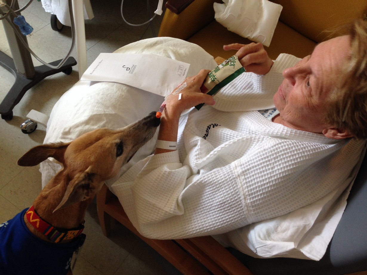 Mo gets visited by a hospital service dog after her whipple surgery