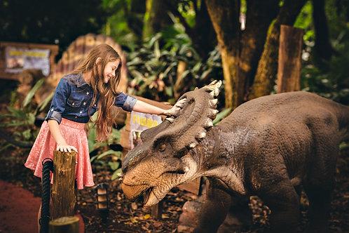 Ingresso Vale dos Dinossauros