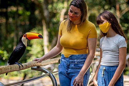 Transporte Parque das Aves
