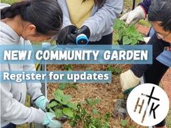 Community Garden #4