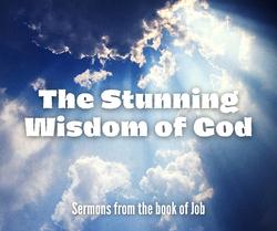The Stunning Wisdom of God