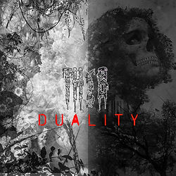 Duality_AC.jpg
