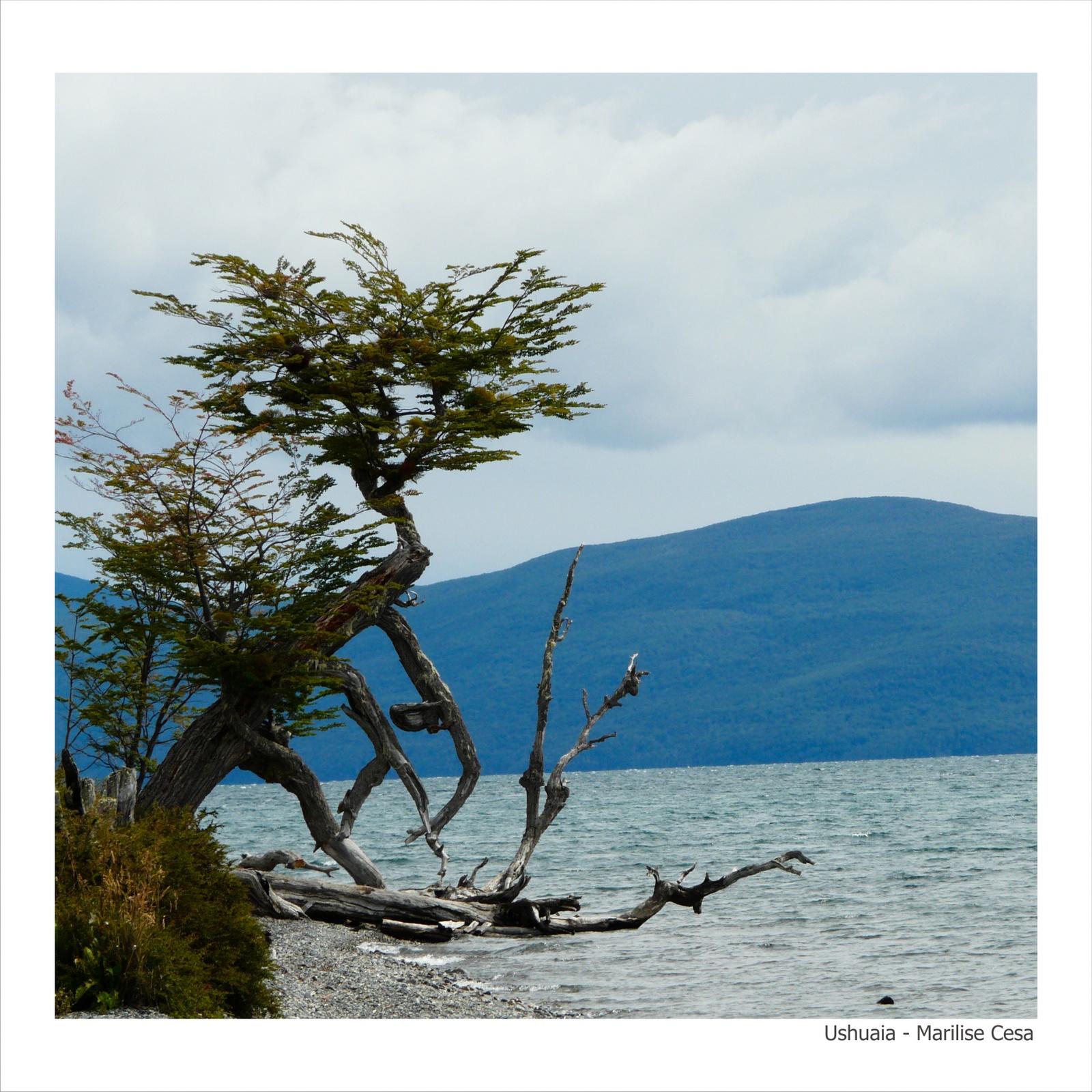 Ushuaia - Marilise Cesa - 30-30